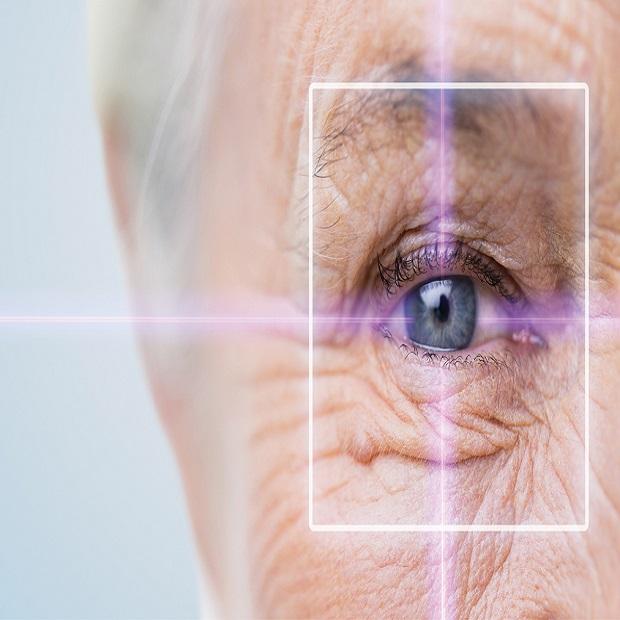 medical retina